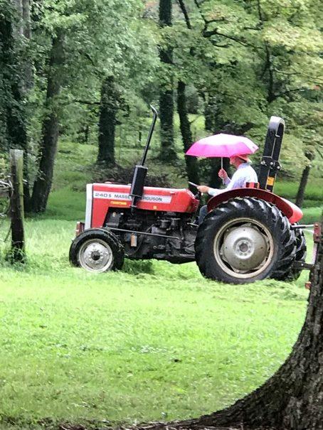 Tractor Pink Umbrella